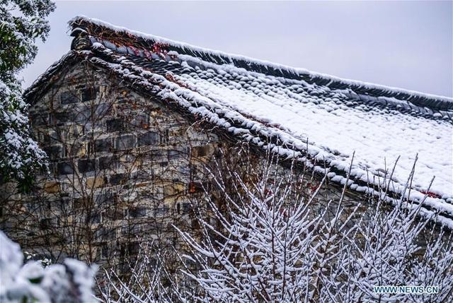 Tuyết đầu mùa năm nay tới sớm hơn mọi năm, khiến người dân cũng náo nức hơn