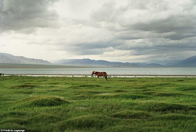 Những bức ảnh mê hoặc về Mông Cổ - 18