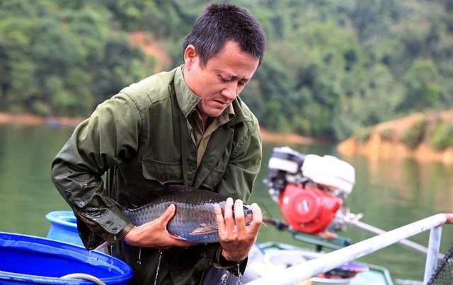 Anh Trần Văn Thuận (SN 1978) là hộ có số lồng cá lớn nhất khu vực hồ thủy điện Hủa Na đang kiểm tra cá tại lồng nhà mình.