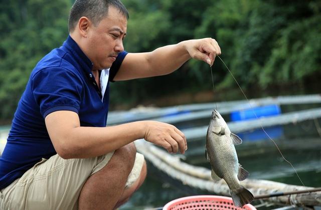 Ông Lương Văn Thái (SN 1963) ở xóm Đồng Tiến, xã Đồng Văn, huyện Quế Phong (Nghệ An) câu cá vược lên để xem tình hình phát triển của đàn cá.