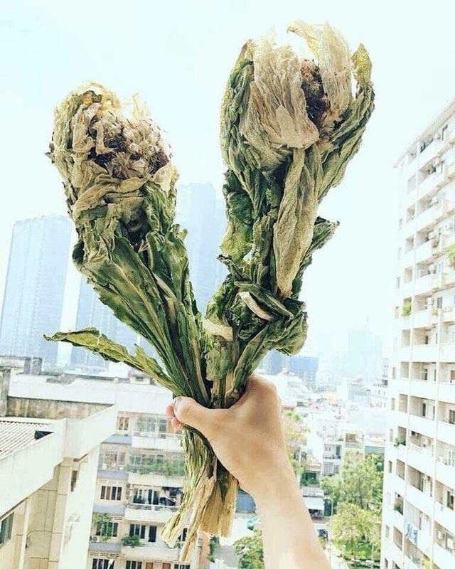 """""""Nhiều người biết tôi mua được loài hoa này nên đã hỏi mua và đặt mua giúp. Tuy nhiên, cũng rất khó khăn mới đặt mua được nên chỉ để dùng chứ không mang tính kinh doanh, thương mại"""" - vị chủ nhân cho biết."""