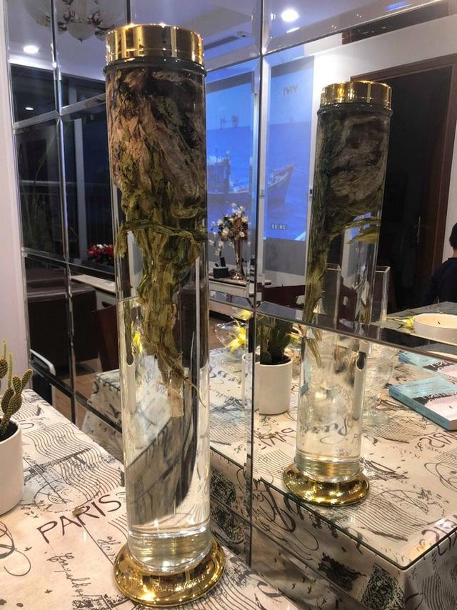 Sau khi mang được loài hoa này về Hà Nội, vị đại gia này đã dùng một phần để ngâm rượu trong bộ sưu tập rượu ngâm của mình