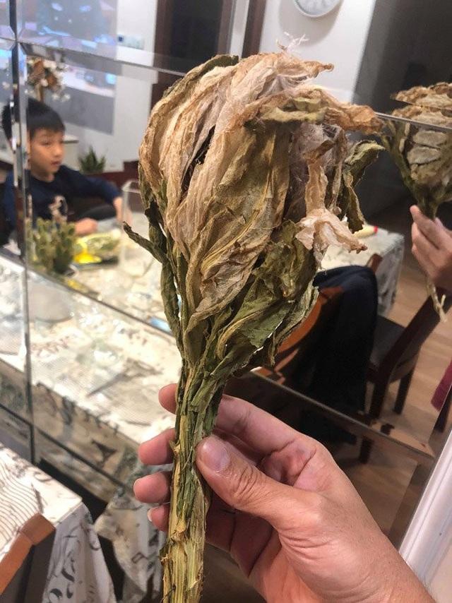 Nhìn thoáng bề ngoài, bông hoa có hình thù như một búp sen, lá to, dày và rộng bao bọc lấy bông phía trong. Bên trong nó là hoa với những sợi bông.