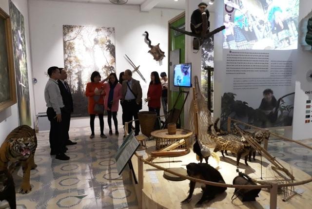 Ra mắt Bảo tàng thiên nhiên - Văn hóa mở - 4
