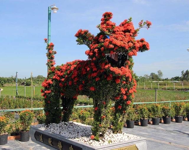 Từ những cây hoa mẫu đơn được trồng để làm hàng rào kiểng nhưng với bàn tay tài hoa, người nghệ nhân đã biến chúng thành những loại kiểng thú độc lạ, có giá trị cao