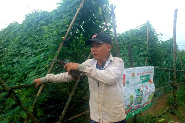 Người dân bức xúc trước nạn trộm nông sản lộng hành của các đối tượng trộm cắp