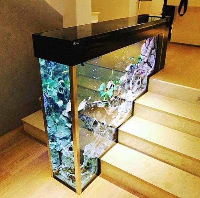 Ngay tại các bậc cầu thang đầu tiền, chúng ta có thể sử dụng một chiếc bể cá để thay thế cho các kiểu lan can đã quá phổ biến. Cách làm này vừa giúp bạn tiết kiệm được không gian, vừa tạo nên điểm nhấn cũng như sự sinh động cho cả ngôi nhà.