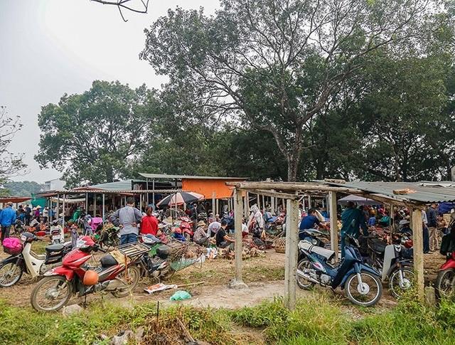 Chỉ cách trung tâm Hà Nội 30 km, chợ Nủa (xã Bình Phú, Thạch Thất) vẫn còn giữ được những nét đặc sắc của chợ phiên vùng đồng bằng Bắc Bộ xưa.