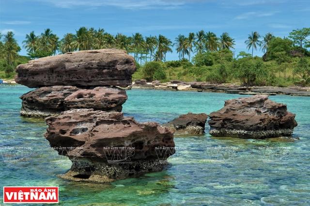 Khám phá vẻ đẹp hoang sơ của An Thới với dải san hô đẹp nhất Việt Nam - 4