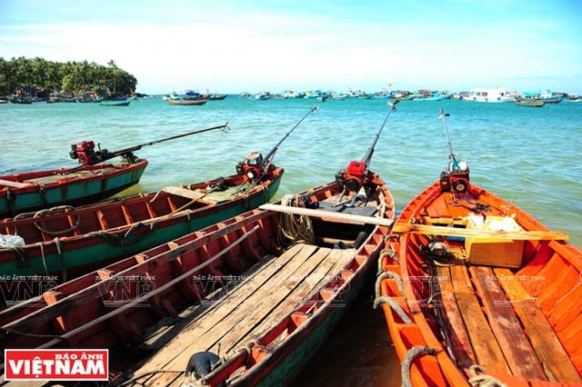 Khám phá vẻ đẹp hoang sơ của An Thới với dải san hô đẹp nhất Việt Nam - 5
