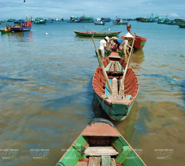 Khám phá vẻ đẹp hoang sơ của An Thới với dải san hô đẹp nhất Việt Nam - 7