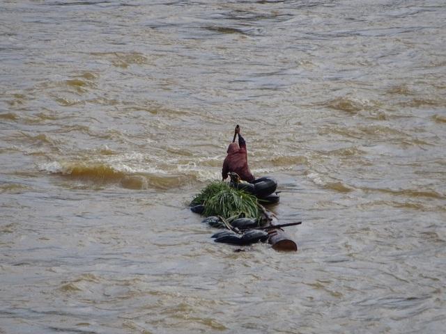 Gỗ lậu ngang nhiên vượt sông Đăk Bla.