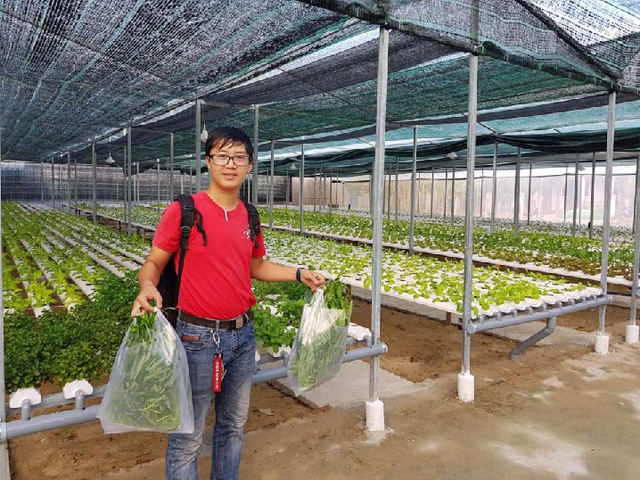 Nhiều khách hàng đến tận vườn rau thủy canh của Nguyễn Thị Y để mua rau và tham quan mô hình. Ảnh: Trần Hậu