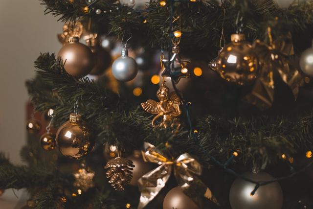 """Khóc cười với… """"hồn ma"""" trong đêm Giáng sinh (kỳ 4) - 2"""