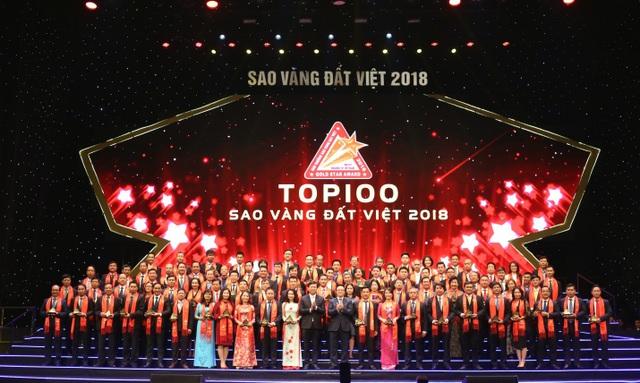 Các doanh nghiệp đạt giải thưởng Sao Vàng Đất Việt 2018 - Ảnh 3.