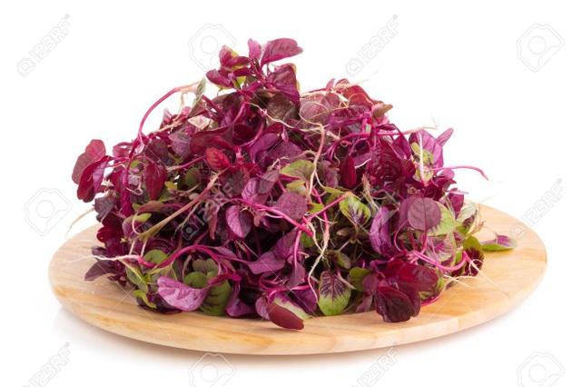 Những lợi ích sức khỏe của rau dền - Ảnh 1.