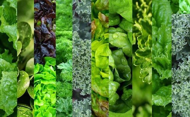 Ăn rau xanh hợp lý có thể giúp ngăn ngừa bệnh gan nhiễm mỡ  - Ảnh 1.