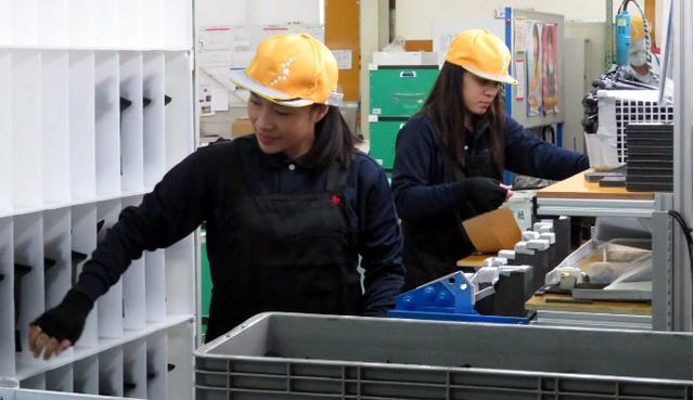 Nhật Bản tranh cãi chuyện trải thảm đón lao động nước ngoài - Ảnh 3.