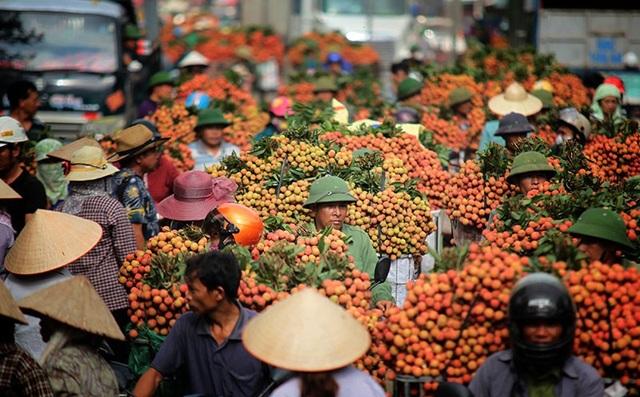 Hàng loạt dấu mốc lịch sử được xác lập tại Bắc Giang năm 2018 - Ảnh 2.