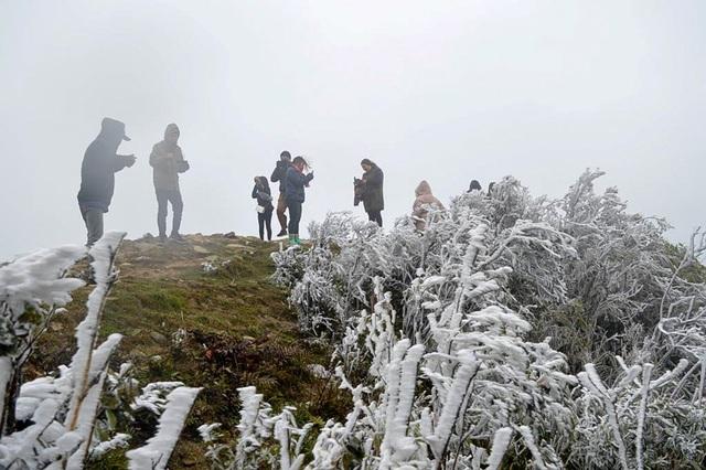 Ngay từ sáng nay, hàng nghìn du khách đổ về đỉnh núi Mẫu Sơn để tham quan tận hưởng khoảnh khắc hiếm có trong năm này.