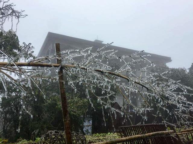 Du khách thích thú với băng tuyết phủ trắng đỉnh Mẫu Sơn - 8