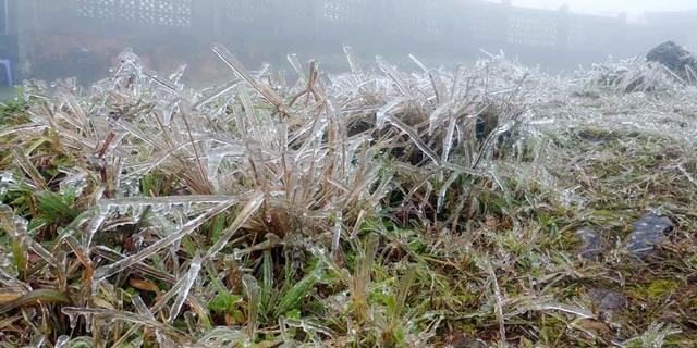 Du khách thích thú với băng tuyết phủ trắng đỉnh Mẫu Sơn - 4