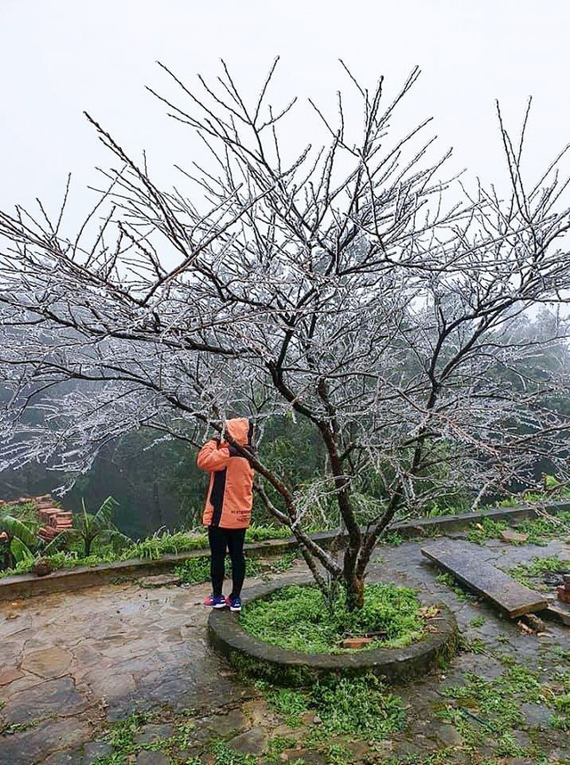 Du khách thích thú với băng tuyết phủ trắng đỉnh Mẫu Sơn - 6
