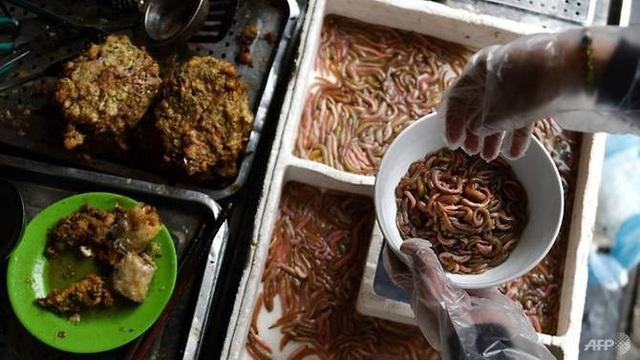 Chả rươi - món ăn trông thì ghê mà ăn lại mê. Ảnh AFP