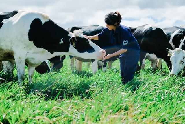 Lần đầu tiên Việt Nam có hệ thống trang trại đạt chuẩn Global GAP lớn nhất Châu Á - 4