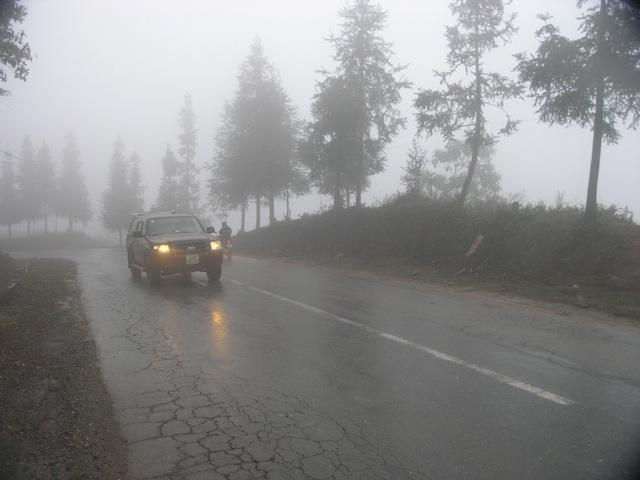 Đường lên Sa Pa mây mù dầy đặc nên xe ô tô phải dùng đèn vàng