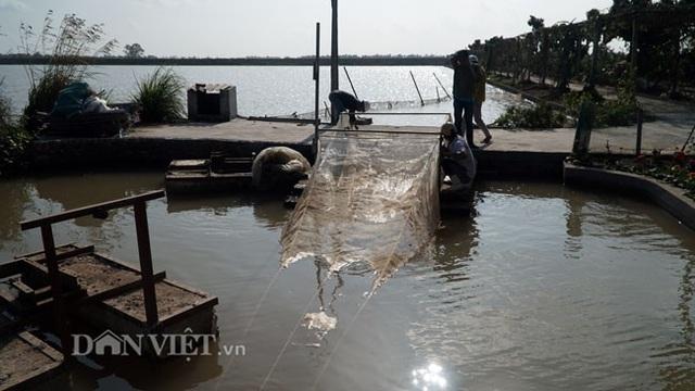 Những chiếc lưới được anh chế tạo để phù hợp với việc bắt rươi. Do rươi là động vận không xương sống, khi thu hoạch dễ bị vỡ, nên luôn luôn phải cẩn thận, nhẹ nhàng khi thu hoạch.