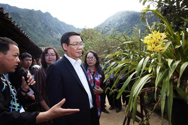 Phó Thủ tướng Vương Đình Huệ thăm điểm kinh doanh hoa lan rừng ở Sin Suối Hồ - nguồn thu nhập không nhỏ của người dân bản