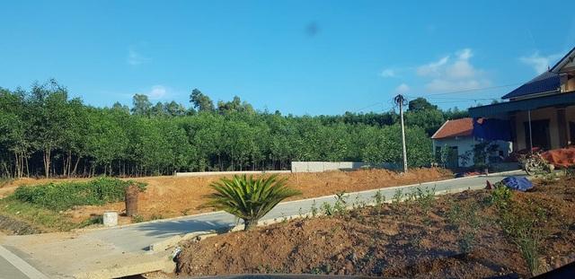 Nghệ An: Xẻ đất lâm nghiệp cạnh đường mòn, xây dựng nhà ở trái phép - 4