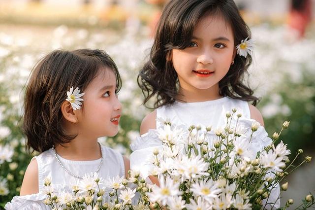 """Cặp chị em nhí """"gây thương nhớ"""" chính là bé Hoàng Thúy Thiện (5 tuổi) và bé Hoàng Thanh Tâm (3 tuổi). Bên cúc họa mi trắng muốt, hai bé đã có những khoảnh khắc đáng nhớ, gieo vào tim người xem những xúc cảm đẹp đẽ."""