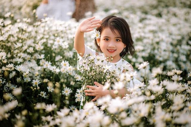 """Cùng ngắm nhìn thêm một số hình ảnh của cặp """"thiên thần nhí"""" Hải Dương bên hoa cúc họa mi:"""