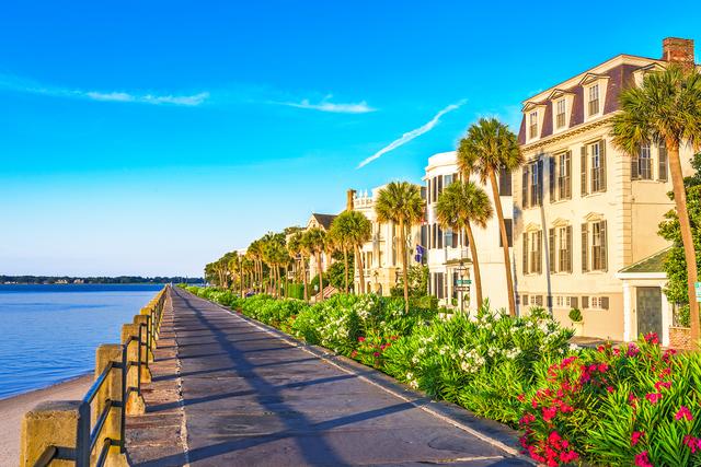 Tìm về không gian sống xanh tại thành phố biển Hạ Long - 1