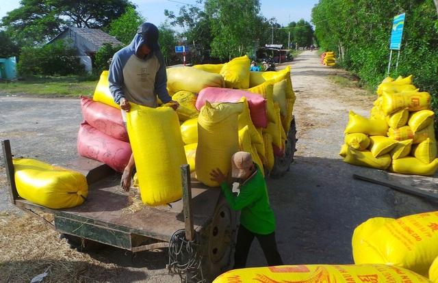 Năm qua, ngành nông nghiệp An Giang gặp thuận lợi khi điều kiện thời tiết, giá cả cây trồng vật nuôi ổn định