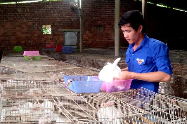 Mô hình chăn nuôi khép kín hiệu quả, trong đó có nuôi thỏ giúp anh Thành thu nhập cả trăm triệu đồng mỗi năm. Ảnh: Đ.S