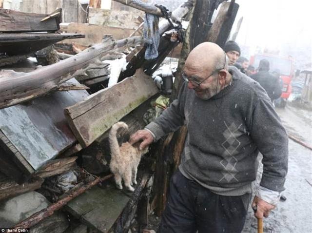 Ông Ali rất yêu mèo và nuôi rất nhiều mèo trong nhà, sau vụ hỏa hoạn, chỉ có một chú mèo con còn sống. Đàn gà mà ông nuôi cũng đã chết hết trong vụ cháy.