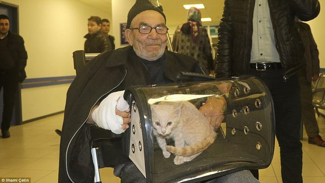 Ông Ali đã được đưa tới bệnh viện kiểm tra sức khỏe sau biến cố, đồng hành với ông là chú mèo con duy nhất may mắn sống sót.