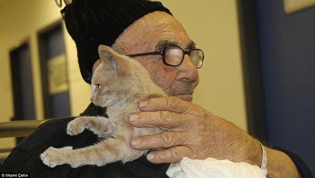 Hình ảnh ông cụ vừa mất tất cả tài sản tìm thấy niềm an ủi bên chú mèo nhỏ đã khiến nhiều độc giả cảm động.