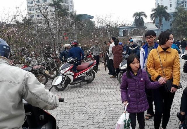 Không khí mua sắm hoa, cây cảnh về chơi Tết đang nóng lên trong những ngày cận Tết. Trong đó, tập trung nhiều nhất vẫn là khu vực quảng trường Lam Sơn, thành phố Thanh Hóa.