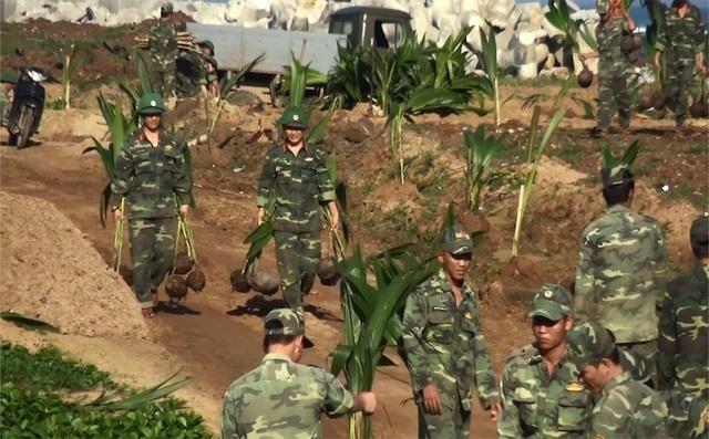 Những chiến sĩ biên phòng trên đảo Lý Sơn ra quân trồng 500 cây dừa trên huyện đảo