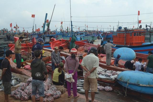 Cảng cá Lý Sơn nhộn nhịp ngày cuối năm