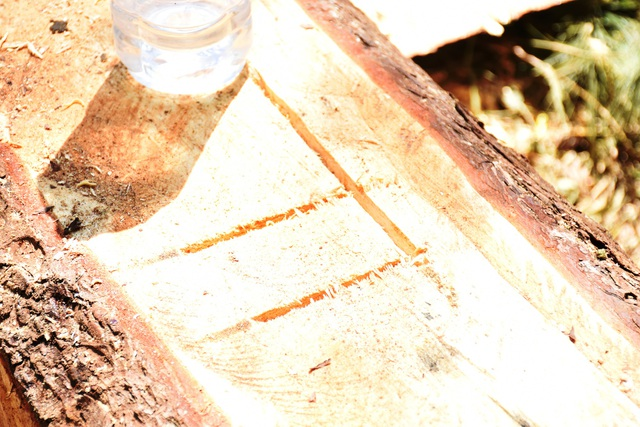 Dấu hiệu lạ được các đối tượng khắc lên tất cả các lóng gỗ bị xẻ thành hộp
