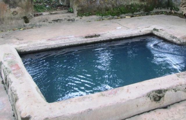 Nguồn nước trong giếng quanh năm xanh mát