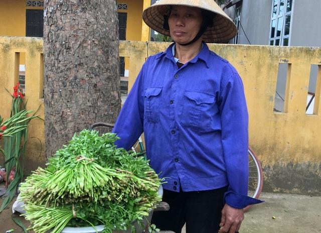 Những bó rau cần xanh tươi được hái đem đến phiên chợ ngày cuối năm bán. Mặc dù thu nhập cũng chẳng đáng là bao, nhưng có thêm đồng ra, đồng vào với những người nông dân.
