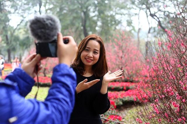 Vườn hoa đào cạnh Hồ Gươm cũng là điểm đến yêu thích của nhiều bạn trẻ trong ngày đầu năm mới