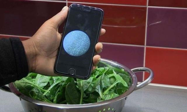 Công cụ giá rẻ để phát hiện vi khuẩn trong thực phẩm và nước - 1