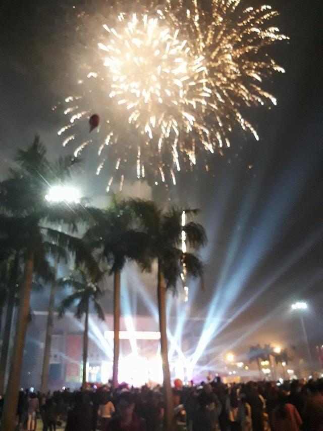Người dân hào hứng thưởng thức pháo hoa mừng năm mới - 26